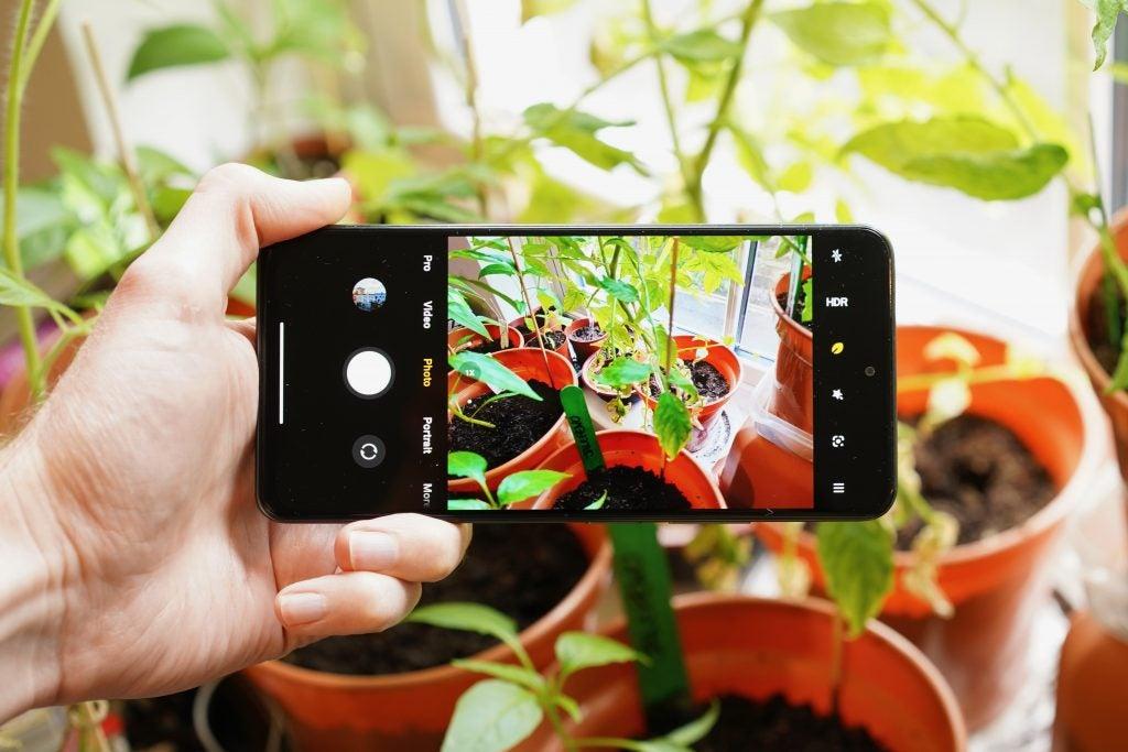 Xiaomi Mi 11i tomando una foto de una planta